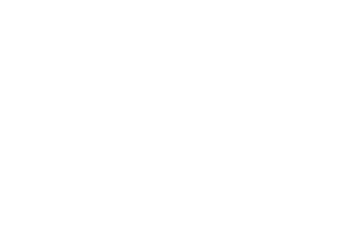 Brooklyn Party Rental | Party & Tent Rental in Brooklyn & NYC